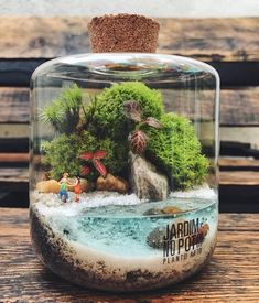 Terrarium Scene, Garden Terrarium, Succulent Terrarium, Moss Garden, Garden Art, Plant In Glass, Mini Bonsai, Fairy Crafts, Miniature Fairy Gardens