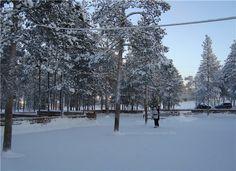 каток Белая Гора