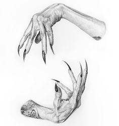 Image result for witch hand