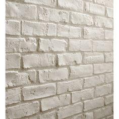 Usage produit:Mur intérieur   Matière:Plâtre   Couleur:Blanc