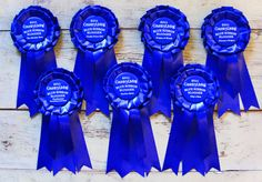 DIY Horse show ribbons, done EASy! No sew...just use a stapler and button badges bought at michaels.