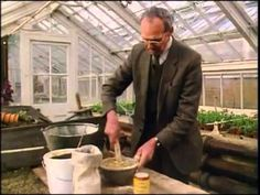 Victorian Kitchen Garden ~ Downton Abbey methadone...Anyone going through Downton Abbey withdrawal might want to consider youtubing The Victorian Garden series. Different vibe altogether but it'll scratch the itch.