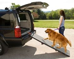 Pet Ramp for cats and dogs up to 200-pounds