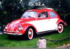 Bug 62a