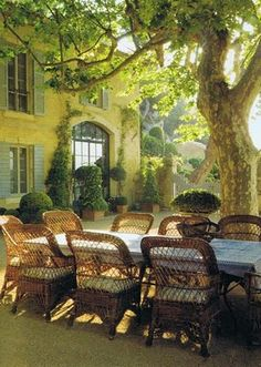 Beautiful wicker chairs and table in the shade of a magnificent old tree.