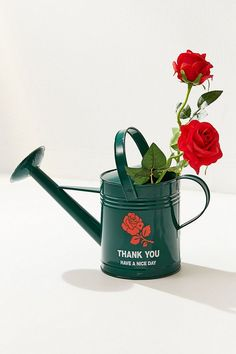11 Watering Cans You'll Love More than Your Plants on domino.com