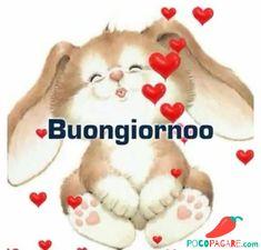 Good Morning Gif, Good Morning Quotes, Italian Greetings, Italian Memes, Happy Thoughts, Stars And Moon, Good Night, Teddy Bear, Funny