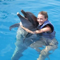 Dolphin Discovery. Oh, how I would love to hug a dolphin!