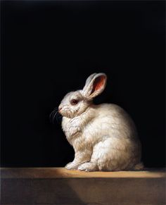 Patricia Traub - Unwanted Pet Rabbit on galleryhenoch.com