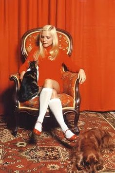 France Gall. orange. cats and dogs.