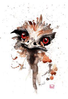 Emu by lloyd-art.deviantart.com on @deviantART