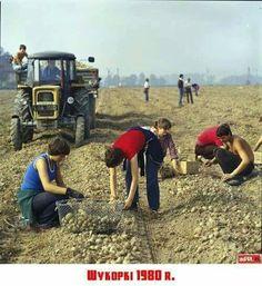 Poland People, Fiat 126, Native Country, Keep Smiling, Socialism, Warsaw, Retro, Carpe Diem, Romania