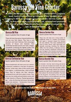 Old Vine Charter Infographics, Vines, Map, Info Graphics, Location Map, Infographic, Grape Vines, Maps, Vitis Vinifera