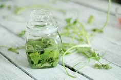 How to Preserve Herbs in 6 Steps  Dry: Lavender, oregano,   Freeze into cubes in water: Basil, chives