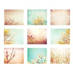 Photography Set of Nine, peach blue coral yellow mint beige aqua teal nature pastel wall art botanical photographs turquoise print set by camille Coral Wall Art, Coral Walls, Pastel Walls, Coral Blue, Yellow, Green Aqua, Mint, Pretty Pastel, Large Prints