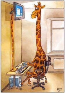 Proper posture when looking at the computer makes all the difference! Giraffe at…