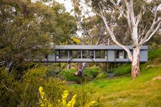 Bridge House by Australian architect Max Pritchard bridges the gap between innovation and architecture. Is it a house? This cool, modern Cantilever Architecture, Interior Architecture, Australian Architecture, Landscape Architecture, Interior Design, Narrow House, Bridge Design, Unusual Homes, Forest House