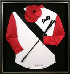 Image result for jockey silks