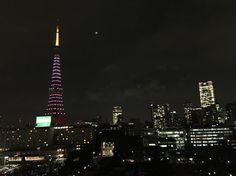 東京の桜の開花に合わせ、東京タワーも桜色。