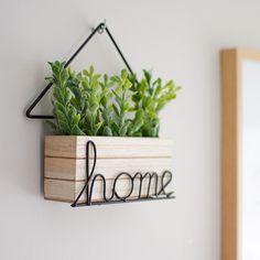 Jolie Photo, Home And Garden, Plants, Projects, Diy, Home Decor, Garage, Appliances, Ideas