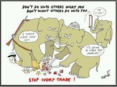Ughh the ivory trade Ivory Trade, Wild Elephant, Save The Elephants, Gentle Giant, Political Cartoons, Animal Rights, Animals Beautiful, Comics