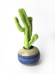 Branched Cacti in Blue Glazed Pot | Hello Polly