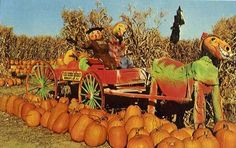 Woodcliff Lake, NJ on Pinterest! Van Riper's Farm in the fall! Repinned to mybergen.com Presents #Bergen County!