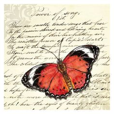 Red Butterfly with vintage poetry art print - 8x8inches (20x20cm)  - fine art giclee print, nature decor, cottage elegance, vintage style