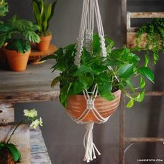Make your own contemporary macrame plant holder with this simple design and tutorial from handcrafted lifestyle expert Lia Griffith.