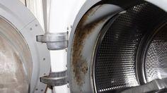 Vízköves vagy undorító barna trutyi van a gépben? Takarítsd rendszeresen a mosógépedet és ezzel megnövelheted az élettartamát és megóvod a ruháidat is!