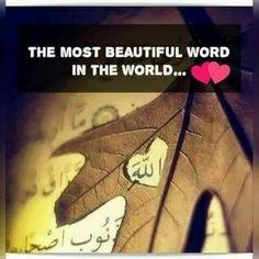 Beshak ❤ Allah Quotes, Muslim Quotes, Urdu Quotes, Religious Quotes, Islamic Quotes, Islam Religion, Islam Muslim, Islam Quran, Muslim Women