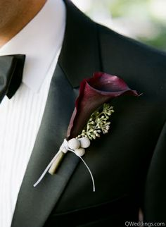 eggplant calla and gray berry boutonnière