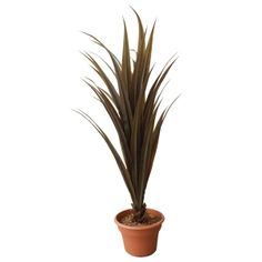 Artificial plant, 53'' brown yucca
