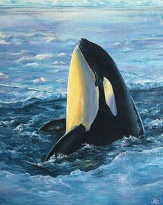 """Break Out"" - Orca. Original acrylic painting by Jen Richards. www.jenrichardsart.com"
