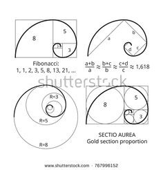Find Golden Fibonacci Ratio Spirals Gold Section stock images in HD and millions of other royalty-free stock photos, illustrations and vectors in the Shutterstock collection. Thousands of new, high-quality pictures added every day. Fibonacci Tattoo, Fibonacci Sequence Art, Fibonacci Golden Ratio, Fibonacci Spiral In Art, Spiral Drawing, Gravure Metal, Golden Ratio Tattoo, Divine Proportion, Geometric Drawing