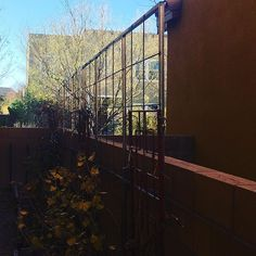 Welded up some trellises for a neighbor to support their grapevines. Nice little weekend project and finished with the install this…