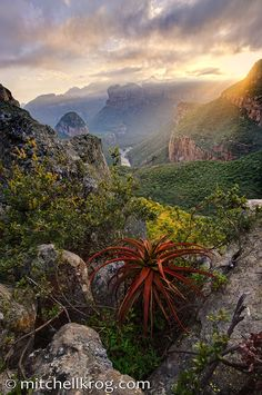 The Blyde River Canyon situated in the Mpumalanga province of South Africa has some of the most fantastic scenery in South Africa. The canyon is the 3rd largest in the world and most certainly the greenest canyon of all. Image by Mitchell Krog