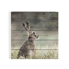 Hare Print On Wood