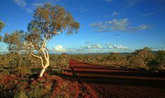 8 inland #adventures in #WesternAustralia #wanderlust travel www.parkmyvan.com.au #ParkMyVan #Australia #Travel #RoadTrip #Backpacking #VanHire #CaravanHire