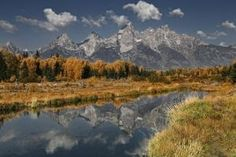 Grand Tetons reflected in the Snake River by bonita