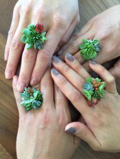 Vivre bague succulentes pour une occasion spéciale.  Chaque anneau succulente est unique et faite sur commande.  La bague de succulente est destinée à porter une occasion spéciale à court terme, mais peut durer plus longtemps lorsqu'il est manipulé avec soin. La base de la bague est en aluminium et la taille est réglable.  Vous pouvez enlever et planter les plantes succulentes dans un pot quand les plantes grasses sur l'anneau commencent à se développer hors de forme.  S'il vous plaît me…