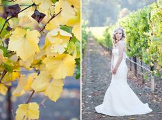 Latest Farmhouse Bride Kristy