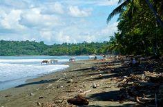 Puerto Pilon, Costa Rica