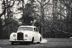 Sir Oliver Limousine - 1960 Rolls Royce - Photo by North Island