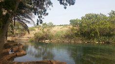השביל הרטוב עמק המעיינות (צילום: מערכת וואלה!, זיו ריינשטיין)