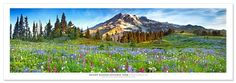 Award Winning Landscape Panoramic Art Print Poster: Mount Rainier National Park