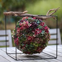 depth of field photography of multicolored petaled flower arrangement on under wood branch in black wired cube holder photo – Free Flower Image on Unsplash Fall Flowers, Diy Flowers, Flower Decorations, Wedding Flowers, Design Floral, Deco Floral, Arte Floral, Hydrangea Bloom, Hydrangea Flower
