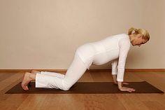 Yoga in der Schwangerschaft - das Programm (Seite 2) - BRIGITTE.de