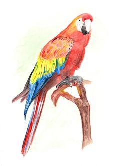 Custom Pets Portrait  Professional  Watercolour Paiting by Huemonk