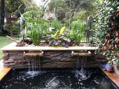 Contemporary above ground koi pond & water garden with bog waterfall.  Aquatic plants act as